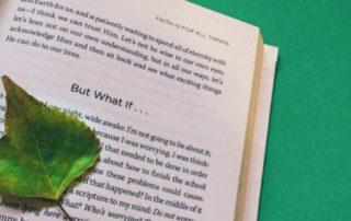 O que aprendi sobre novos conhecimentos – como transformar INPUT em OUTPUT.